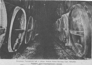 Имение князя Кочубея. Подвал пиво-медоваренного завода