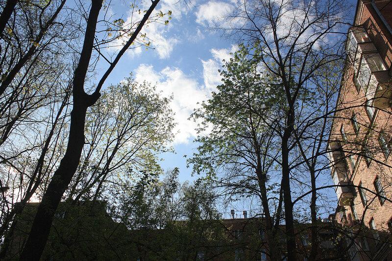 Небо нашего двора