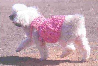 Одежда для животных: розовое платье для собаки