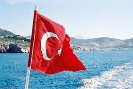 Турция страна с быстро развивающейся экономикой