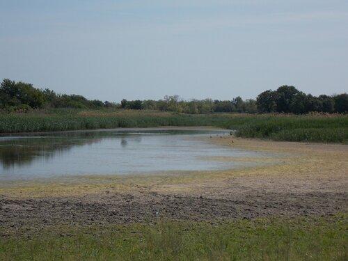 Верхний пруд на реке Кагальник в хуторе Попов Зерноградского района