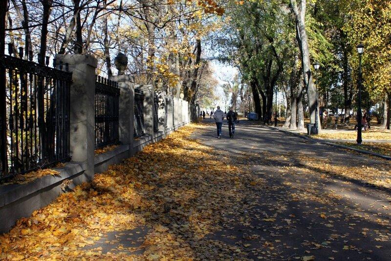 Дорога под стадионом Динамо