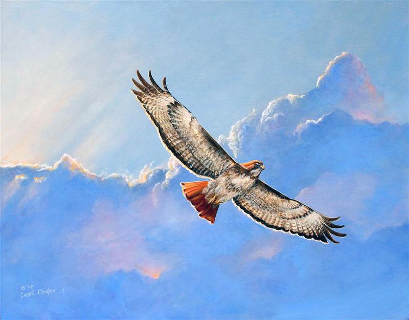 Нет в природе лишних дуновений   Художница Carol Decker. Птицы