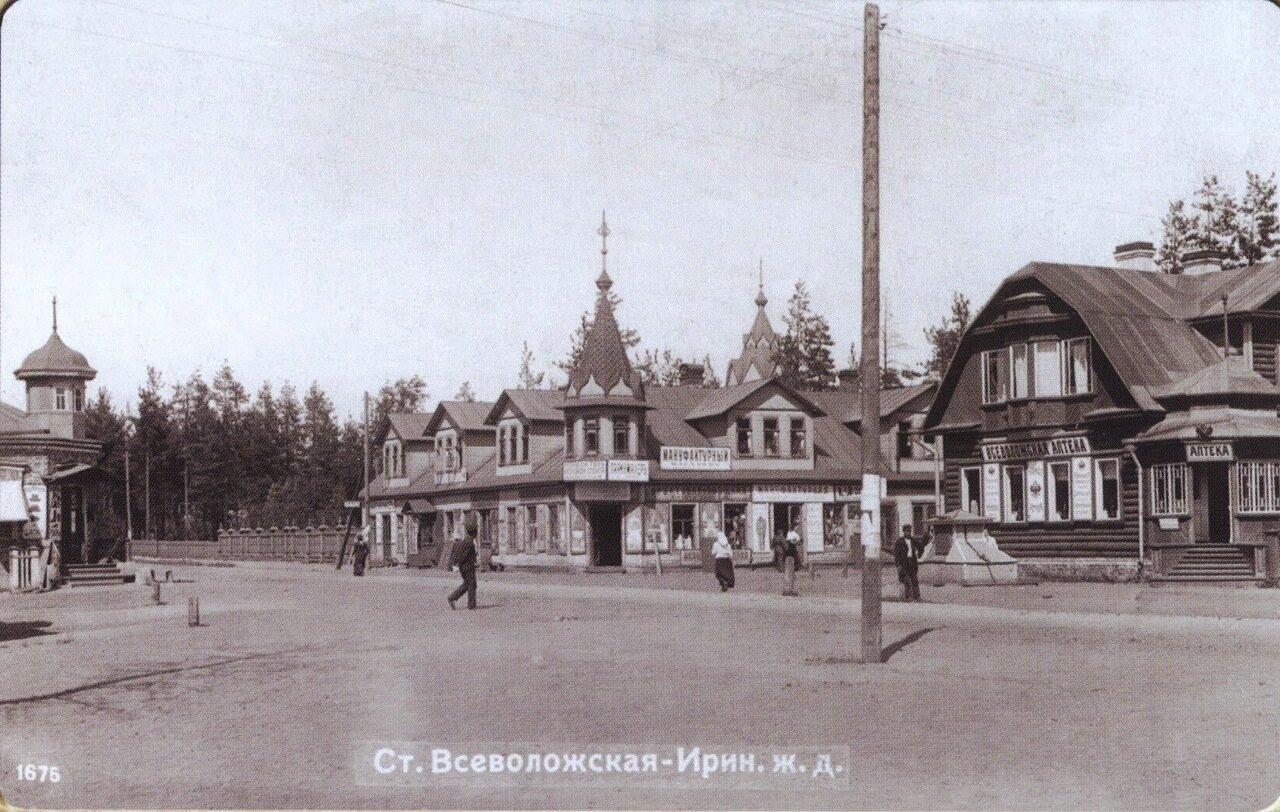 Станция Всеволожская
