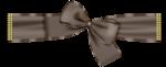 AD_ribbon.png