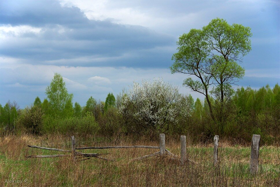 Долгая дорога в Припять. Часть 1