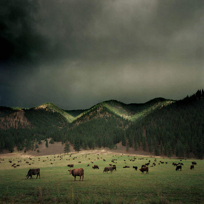 Американские пейзажи фотографа Майкла Истмена