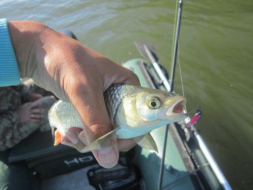 час потраченный на рыбалке