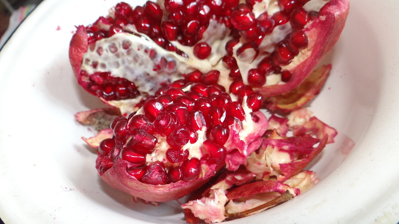 Still, Pomegranate.