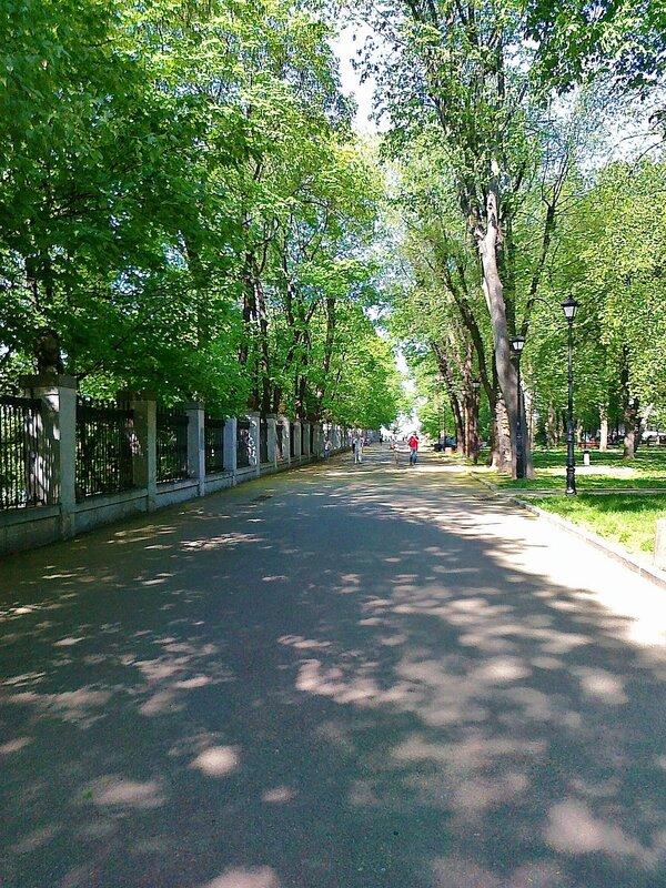 Дорога вдоль стадиона Динамо