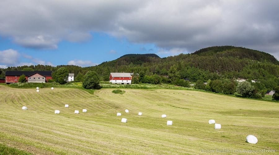Норвегия 2014
