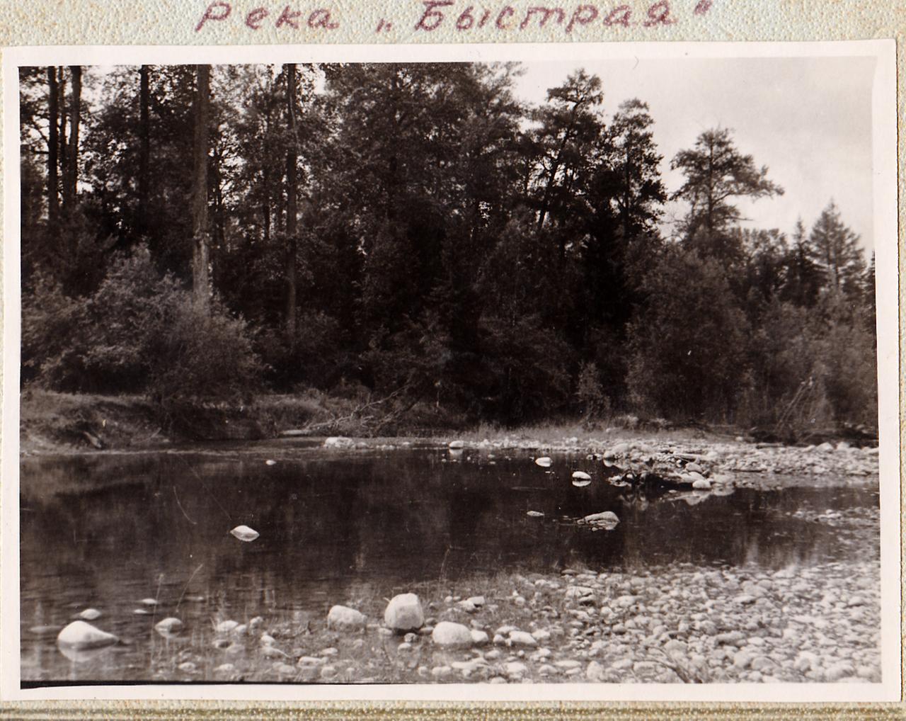Река «Быстрая»