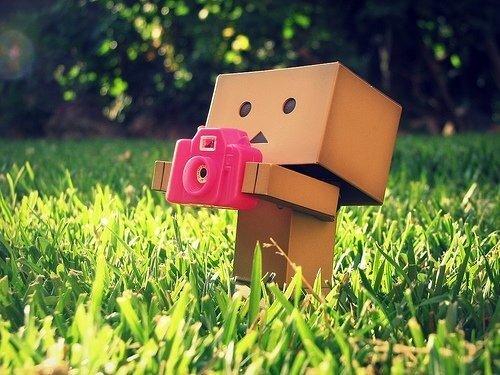 Обои для рабочего стола - Человек-коробка и фотоаппарат (человек коробка держит в руках розовый фотоаппарат, газон) .