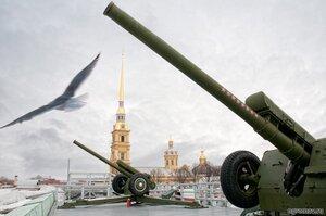 11:55 (Петербург, Петропавловский собор, птица, пушка, чайка)