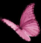 DBV_FlyB_element (11).png