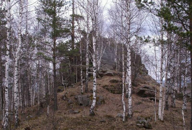 Гора Семибратка (11.11.2013)