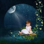 «черничные ночи» 0_6a5c2_dfe1d35e_S