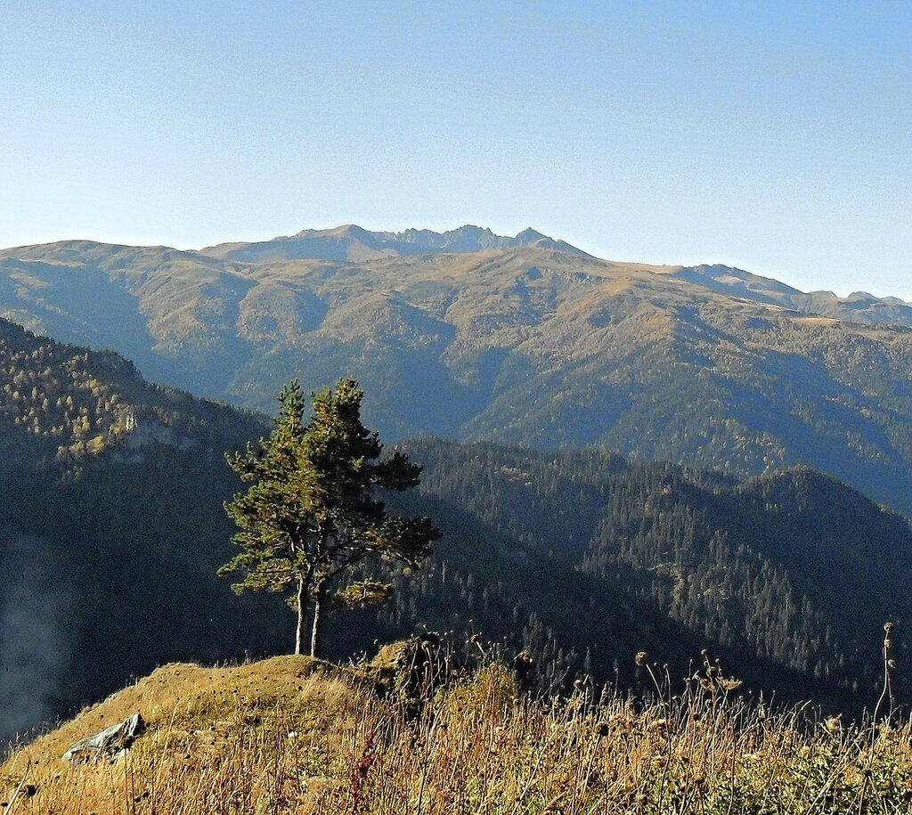 На утренней тропе, Кавказ