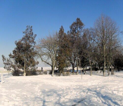 В феврале, фото