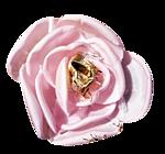 http://img-fotki.yandex.ru/get/4912/97761520.cf/0_7fbf8_12aed92b_orig.png