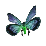 «часики»  0_69928_3059eba8_S