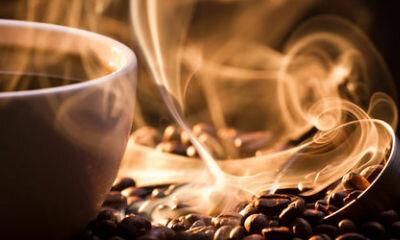 Житель Швеции угостил кофем вора забравшегося в его дом