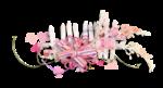 Palvinka_FlowerEssence_cluster (14).png