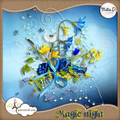 «волшебная ночь» 0_6effc_1db10a2d_L