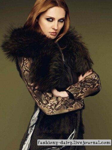 Каталог модной одежды зима 2011-2012 от Roberto Cavalli.