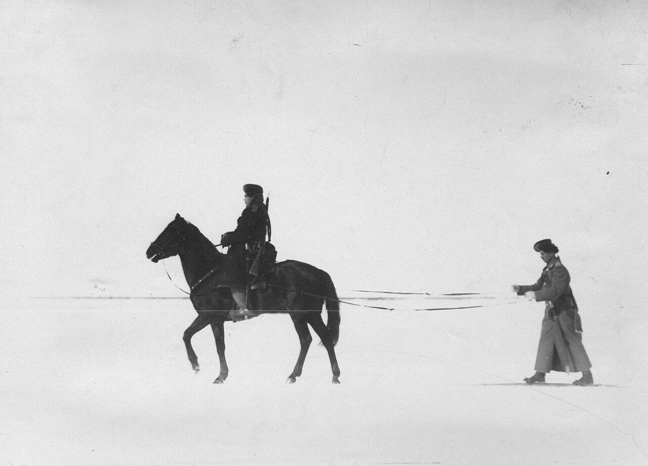 11. Казаки полка на учении в 1-ой Петербургской императора Александра III бригаде отдельного корпуса пограничной стражи. Зима 1907-1908 гг