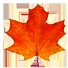 Осеннее гадание на кленовых листьях от Magеs Queen