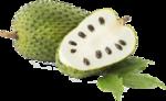 Гуанабана (сметанное яблоко) (3).png