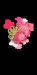 Palvinka_FlowerEssence_cluster (2).png