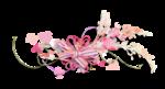 Palvinka_FlowerEssence_cluster (15).png
