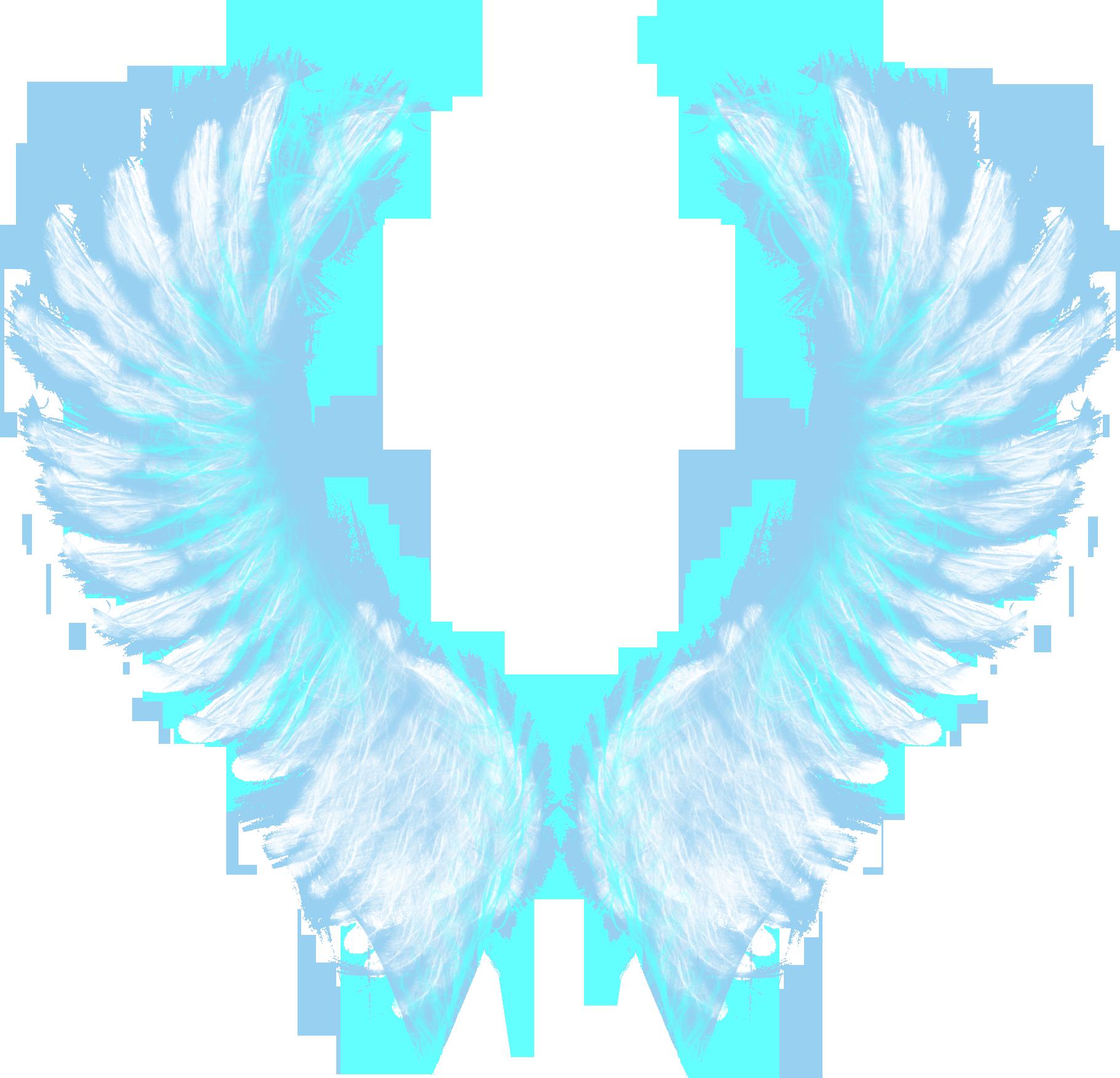 крылья ангела картинка