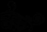natali_design_apple_swirl1 (2).png