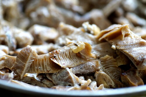 <b>грибы</b>