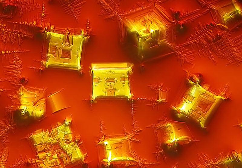 2. Кристаллизованный соевый соус (увеличение х16). Фото сделано в Пекинском университете иностранных