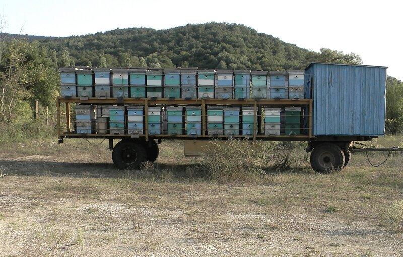 достаточно много передвижная пасека на колесах фото для шаржа