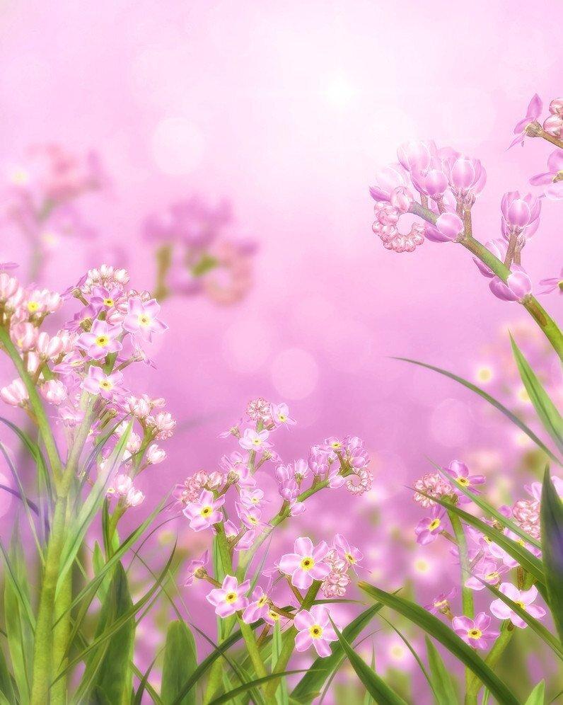 Защитника картинка, красивые фоны для открыток весна