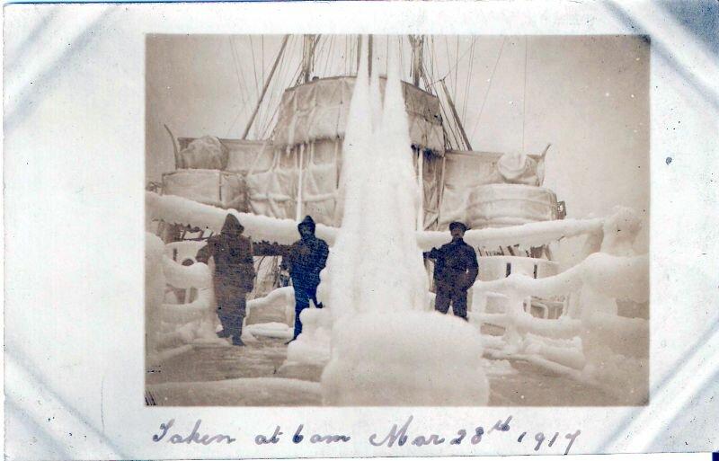 1917. 28 ноября