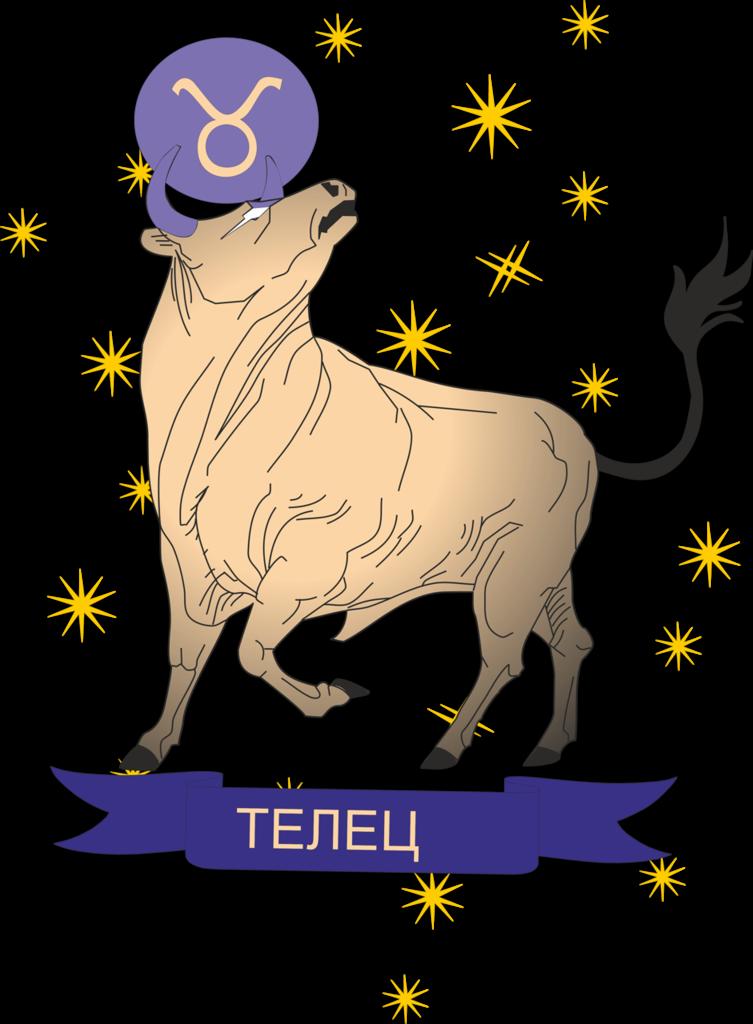 секреты приготовления астрология влюбленный мужчина бык недели: телеведущая Юлия