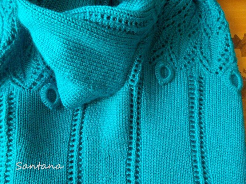非常漂亮的翡翠色毛衣 - maomao - 我随心动