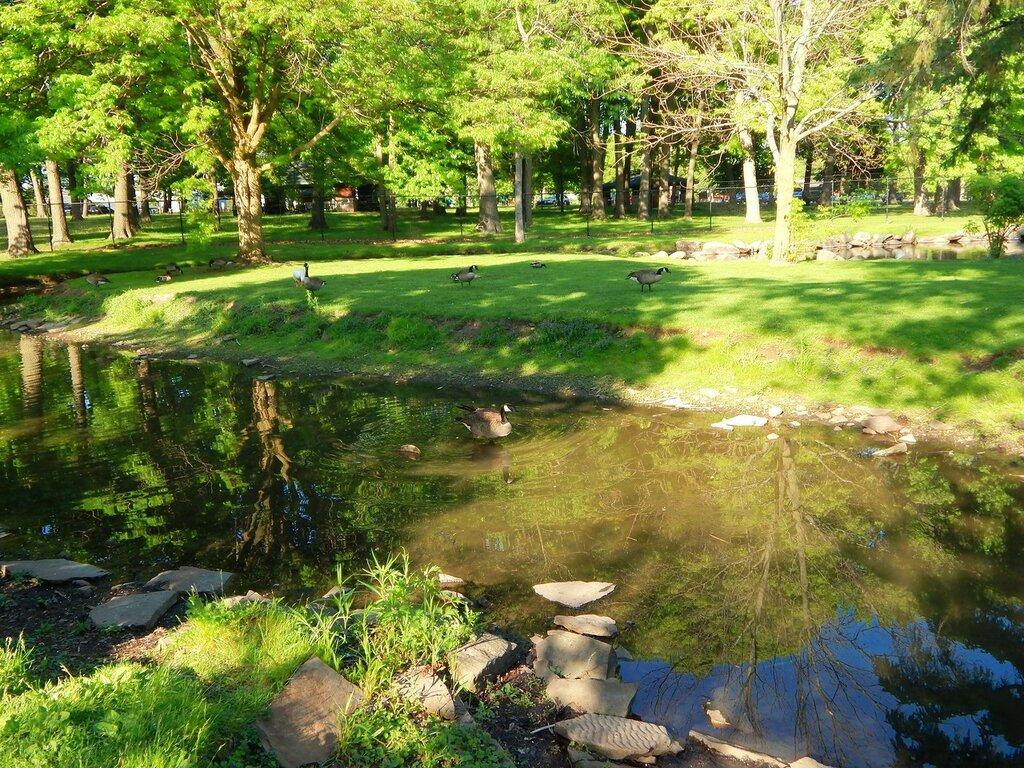 Wildwood Park.