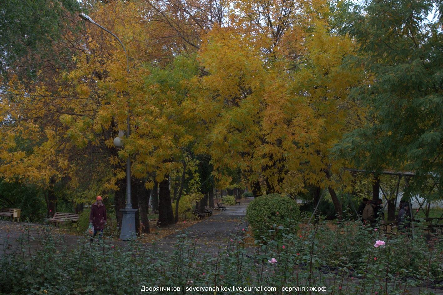 Осень - Парк ВГС - Волжский - 14 октября 2016