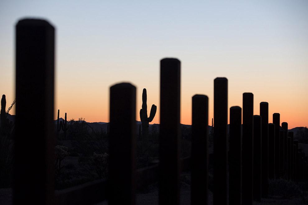 36. Стена на границе с Мексикой и кактусы, 16 февраля 2017. (Фото Jim Watson):