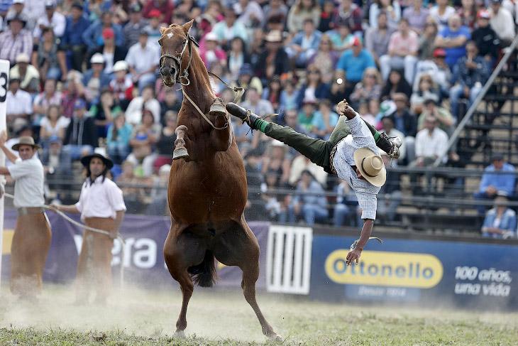 2. Гаучо вели кочевой образ жизни и свободно жили на землях от северной Патагонии до Риу-Гранди-ду-С