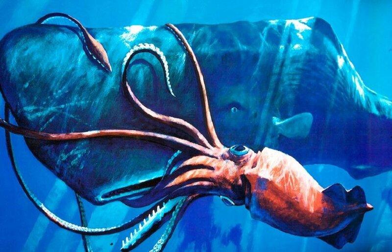 15 самых странных обитателей океана (фото)