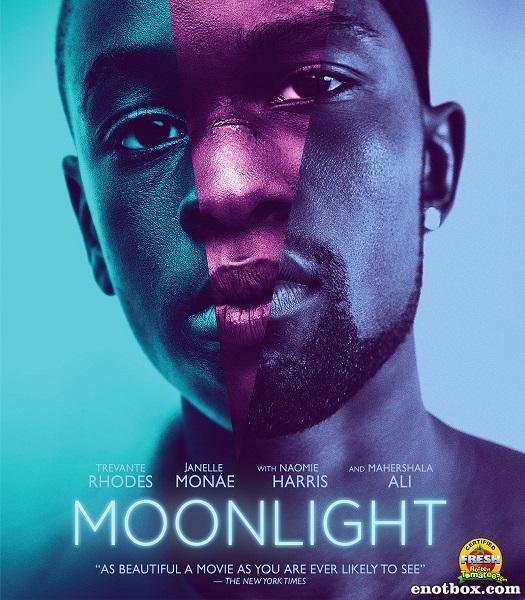 Лунный свет / Moonlight (2016/WEB-DL/WEB-DLRip)