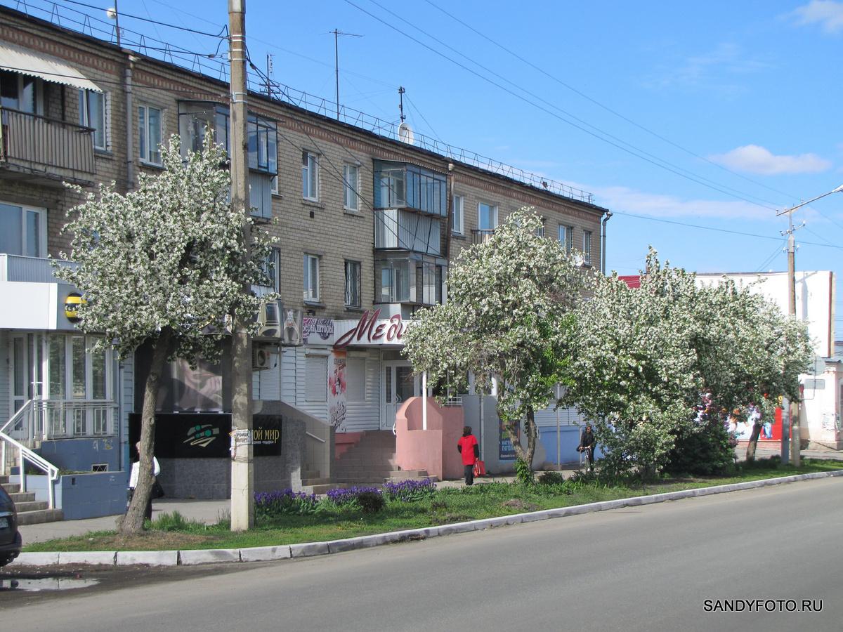 Цветущий Троицк — улица Гагарина — часть  первая